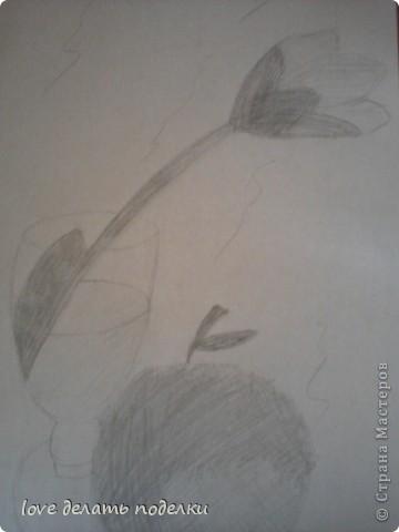 Здравствуйте, кто зашёл в мой первый блог=) Вот такой тюльпанчик нарисовала Я! Просто стоял на комоде, а я же не усидчивая вот и срисовала=) Потом ещё яблочко подложила рядом, подрисовала, и в итоге получился: натюрморт! фото 1