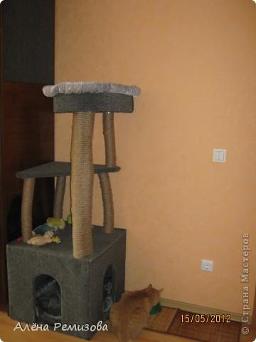 """Кошкин домик! Сделал мой муж, по моему эскизу """"Как то так"""", подушки шила сама. Материалы: ДСП, ДВП, ветки сосны, бичевка, ковролин, саморезы, клопы, скобы"""