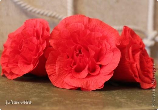Сделала таких три цветочка(решила попробывать сделать цветочки посложней). А вот куда, с чем и в какой емкости их сочетать пока придумать не могу... фото 2