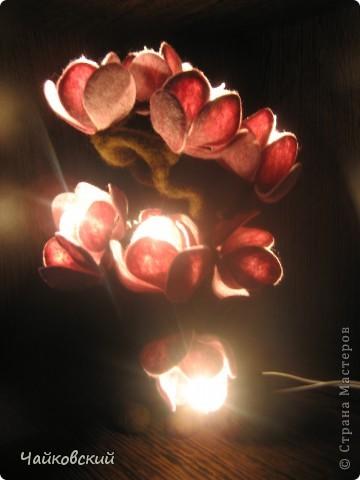 Светильник из шерсти магнолия фото 6