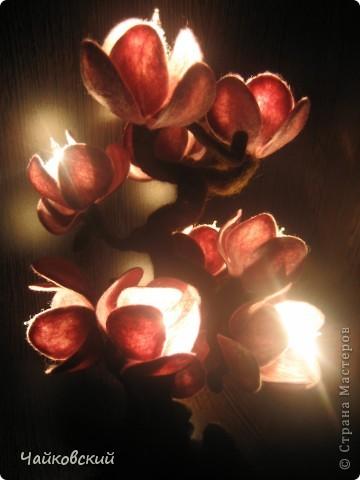 Светильник из шерсти магнолия фото 5