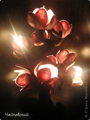 Светильник из шерсти магнолия фото 10