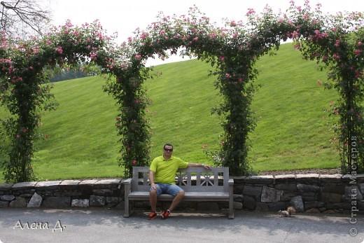 Приветик девочки! Вчера ездили с мужем в сады Дюпона! Нам очень понравилось! Немного пофоткала, приглашаю и ВАС посмотреть немного фотографий. фото 2
