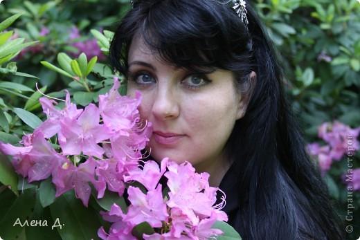 Приветик девочки! Вчера ездили с мужем в сады Дюпона! Нам очень понравилось! Немного пофоткала, приглашаю и ВАС посмотреть немного фотографий. фото 10