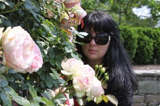 Приветик девочки! Вчера ездили с мужем в сады Дюпона! Нам очень понравилось! Немного пофоткала, приглашаю и ВАС посмотреть немного фотографий. фото 27