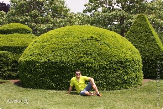 Приветик девочки! Вчера ездили с мужем в сады Дюпона! Нам очень понравилось! Немного пофоткала, приглашаю и ВАС посмотреть немного фотографий. фото 29