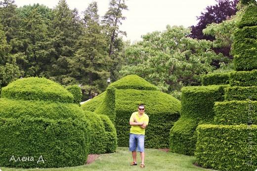 Приветик девочки! Вчера ездили с мужем в сады Дюпона! Нам очень понравилось! Немного пофоткала, приглашаю и ВАС посмотреть немного фотографий. фото 32