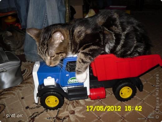 Добрый день, дорогие мастерицы! как говорится, кому что - а мне котов побольше для счастья. сотворился у меня вот такой зверюка. фото 6