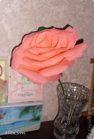 """Подруга попросила сделать розу, но не простую, а """"ну ооочень большую!"""")) фото 5"""