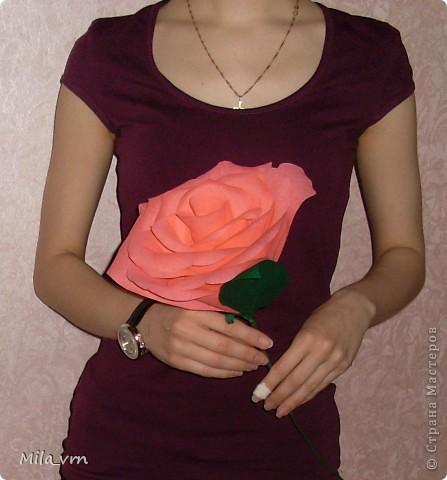 """Подруга попросила сделать розу, но не простую, а """"ну ооочень большую!"""")) фото 4"""