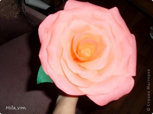 """Подруга попросила сделать розу, но не простую, а """"ну ооочень большую!"""")) фото 2"""