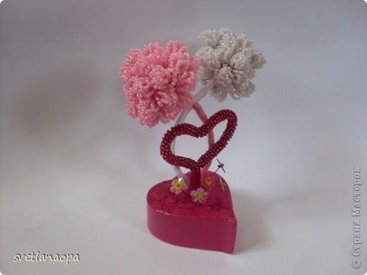 Хочу показать подборку разных деревьев ко Дню Влюбленных. фото 2