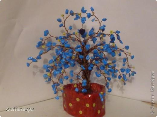 Хочу показать подборку разных деревьев ко Дню Влюбленных. фото 17