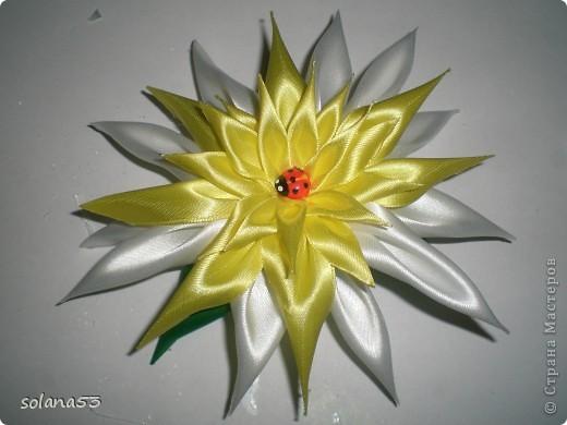 Ромашка...история происхождения))))) фото 5
