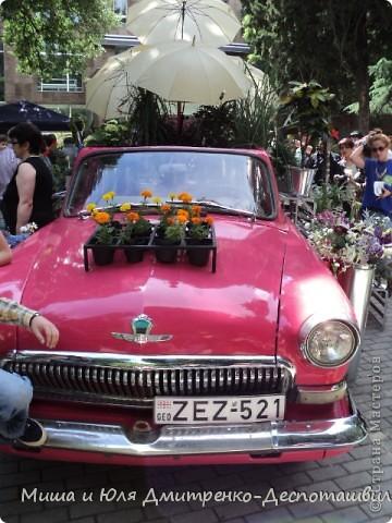 """В предыдущих двух фоторепортажах мы уже рассказывали о фестивале """"Сделано в Грузии"""" в г. Тбилиси, проведенном 26 мая в честь Дня Независимости Грузии. Интересного было много, поэтому продолжаем выкладывать новые фото.  Маленький грузин в кабалахи. Это теплые накидка и шапка, которые не пропускают воду. Именно поэтому их чаще всего одевали в горах.  фото 11"""