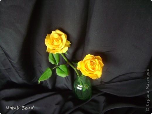 Добрый вечер СМ!!!!Вот опять лепила с натуры пошлы местные розы,теперь все знакомые зная мою страсть к лепке одаривают цветами))))Осталась довольна,как не странно,такое бывает не всегда))),ну а что скажите ВЫ.....????? фото 8