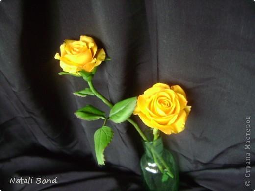 Добрый вечер СМ!!!!Вот опять лепила с натуры пошлы местные розы,теперь все знакомые зная мою страсть к лепке одаривают цветами))))Осталась довольна,как не странно,такое бывает не всегда))),ну а что скажите ВЫ.....????? фото 9