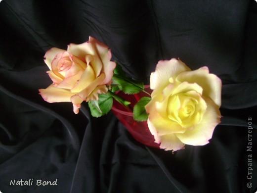 Добрый вечер СМ!!!!Вот опять лепила с натуры пошлы местные розы,теперь все знакомые зная мою страсть к лепке одаривают цветами))))Осталась довольна,как не странно,такое бывает не всегда))),ну а что скажите ВЫ.....????? фото 2