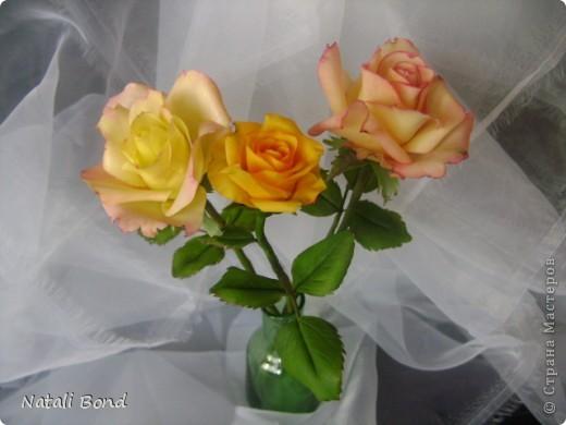 Добрый вечер СМ!!!!Вот опять лепила с натуры пошлы местные розы,теперь все знакомые зная мою страсть к лепке одаривают цветами))))Осталась довольна,как не странно,такое бывает не всегда))),ну а что скажите ВЫ.....????? фото 3