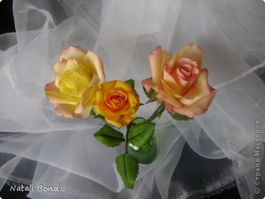 Добрый вечер СМ!!!!Вот опять лепила с натуры пошлы местные розы,теперь все знакомые зная мою страсть к лепке одаривают цветами))))Осталась довольна,как не странно,такое бывает не всегда))),ну а что скажите ВЫ.....????? фото 7