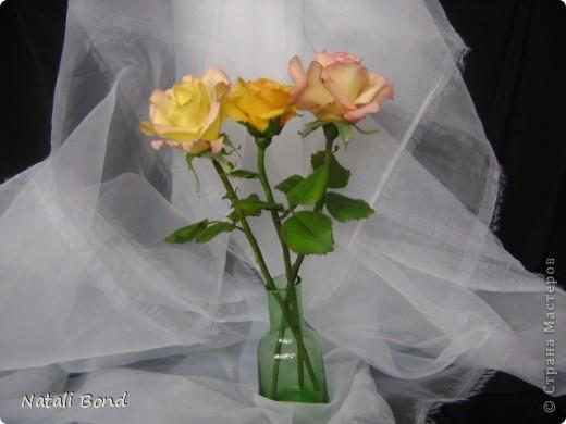Добрый вечер СМ!!!!Вот опять лепила с натуры пошлы местные розы,теперь все знакомые зная мою страсть к лепке одаривают цветами))))Осталась довольна,как не странно,такое бывает не всегда))),ну а что скажите ВЫ.....????? фото 4