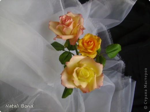 Добрый вечер СМ!!!!Вот опять лепила с натуры пошлы местные розы,теперь все знакомые зная мою страсть к лепке одаривают цветами))))Осталась довольна,как не странно,такое бывает не всегда))),ну а что скажите ВЫ.....????? фото 5