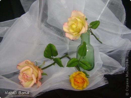 Добрый вечер СМ!!!!Вот опять лепила с натуры пошлы местные розы,теперь все знакомые зная мою страсть к лепке одаривают цветами))))Осталась довольна,как не странно,такое бывает не всегда))),ну а что скажите ВЫ.....????? фото 1