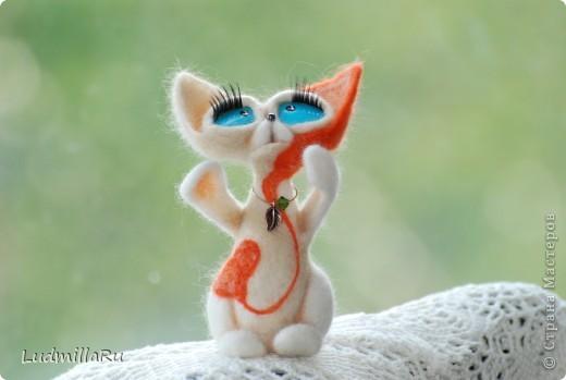 Влюблённый котёнок... фото 1