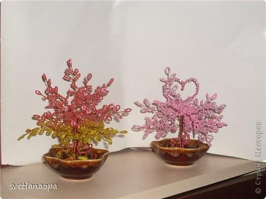 Хочу показать подборку разных деревьев ко Дню Влюбленных. фото 6