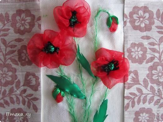 АНГЕЛЬСКИЕ ЦВЕТЫ  Не знаю краше ангельских цветов, Которые зовутся красным маком... Нежнее не встречала лепестков - Блестящих, как покрытых лаком.  Лариса Кузьминская   фото 3