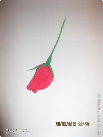 Розы из бумаги фото 5