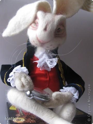 Белый кролик из Алисы дубль 2. фото 2