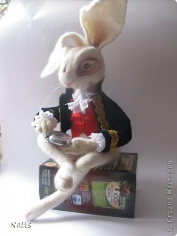 Белый кролик из Алисы дубль 2. фото 3