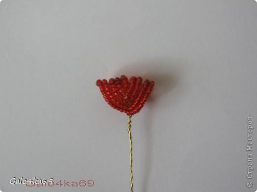 Орхидею делала по орхидее Татьяны  http://stranamasterov.ru/node/167600?c=favorite,  спасибо ей большое за схемку( фото с описанием из журнала) ,очень она у нее мне понравилась, как настоящая и я решила сделать такую же, но пока мини, и чтобы всем стало достуно, решила сделать по описанию МК .  Для изготовления цветка нам понадобится бисер: белый- 20гр. бордовый- 5 гр. розовый -10 гр. алый – 5 гр.  фото 7
