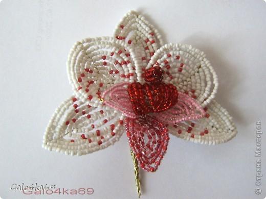 Орхидею делала по орхидее Татьяны  http://stranamasterov.ru/node/167600?c=favorite,  спасибо ей большое за схемку( фото с описанием из журнала) ,очень она у нее мне понравилась, как настоящая и я решила сделать такую же, но пока мини, и чтобы всем стало достуно, решила сделать по описанию МК .  Для изготовления цветка нам понадобится бисер: белый- 20гр. бордовый- 5 гр. розовый -10 гр. алый – 5 гр.  фото 9
