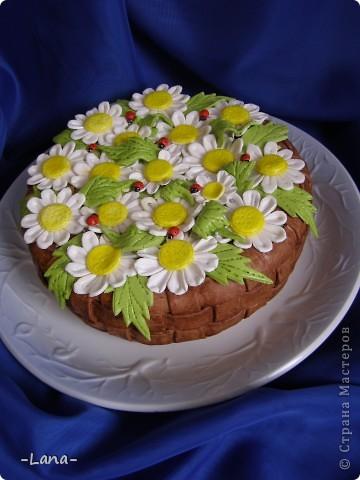 Мастичный тортик для любительници ромашек фото 2