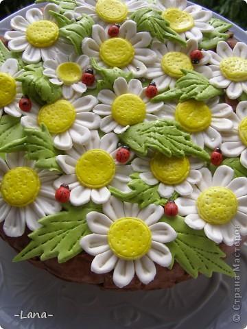Мастичный тортик для любительници ромашек фото 3