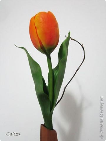 Этот тюльпан сделан на заказ, завтра отправится по назначению.... фото 1