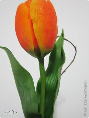 Этот тюльпан сделан на заказ, завтра отправится по назначению.... фото 2