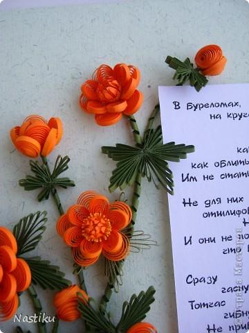 """В Иркутской области их называют """"жарки"""", в Новосибирской - """"огоньки"""". А по научному - """"купальница азиатская"""". С детства помню одно место, где их было целое поле :) Это был полулуг-полуболото, а на нем эти любители воды расцветали ковром весной. Начала делать эту картинку еще в марте, когда среди серости и грязи так хотелось иметь свой собственный яркий кусочек настоящей весны. фото 3"""
