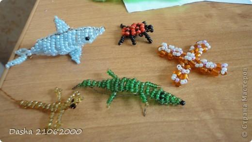 Дельфин, божья-коровка, крестик, крокодил и ящерица.  фото 1