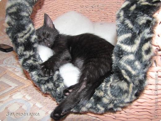 на домик приклеили котят, пошитых из квадрата ткани, эту идею слямзила у Трофимовой Елены фото 6