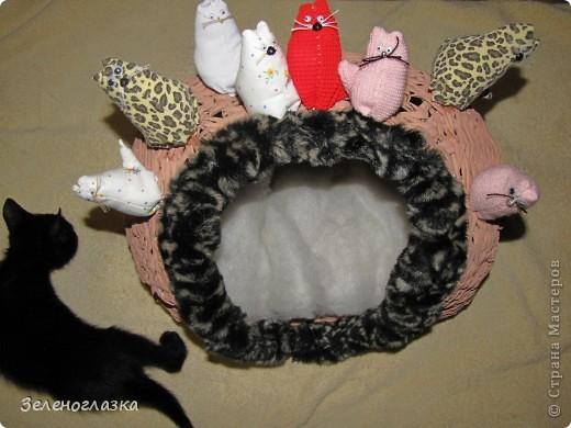 на домик приклеили котят, пошитых из квадрата ткани, эту идею слямзила у Трофимовой Елены фото 4