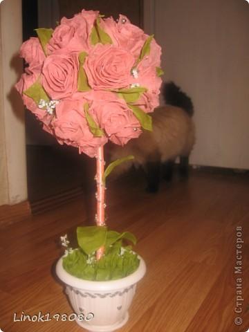 Пепел Розы фото 3