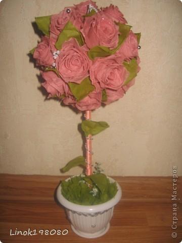 Пепел Розы фото 1