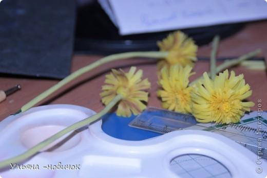 Что нам потребуется: глина желтая,зеленая, и светло-зеленая стек проволока папка или паста-машина стек с булькой маленькой пастель терпение и ... терпение)) фото 8