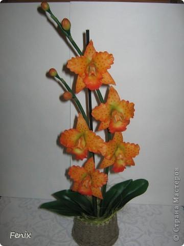 Получилась у меня нынче вот такая оранжевая орхидея. Назвала её Тигровой )))) Сделала фото как собрала её полностью. Вот и выложила свою новою работку. )))) Надеюсь Вам понравиться. фото 1