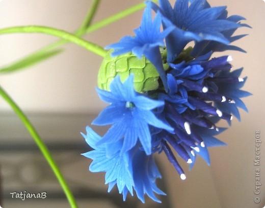 Композиция выполнена из цветов васильков из холодного фарфора и сухоцветов. Сухоцветы трава, колоски злаков и окрашенные коробочки настоящих васильков. фото 2