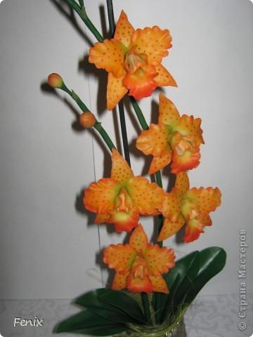 Получилась у меня нынче вот такая оранжевая орхидея. Назвала её Тигровой )))) Сделала фото как собрала её полностью. Вот и выложила свою новою работку. )))) Надеюсь Вам понравиться. фото 2