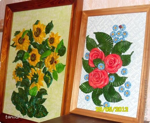 Эти розы я подарила одному очень хорошему человеку в знак благодарности... фото 5